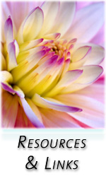 Liz Baughman, Energy Healing, Wellness & Nutrition, Tantric Healing, Soul Journeys, Massage Therapy, in Sedona, Arizona